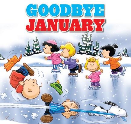 Adios enero 2016