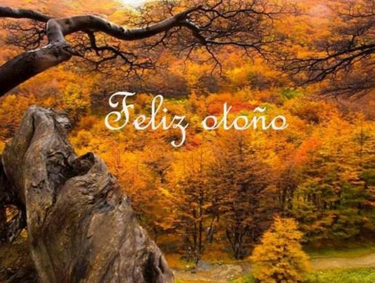Carteles Bienvenido otoño