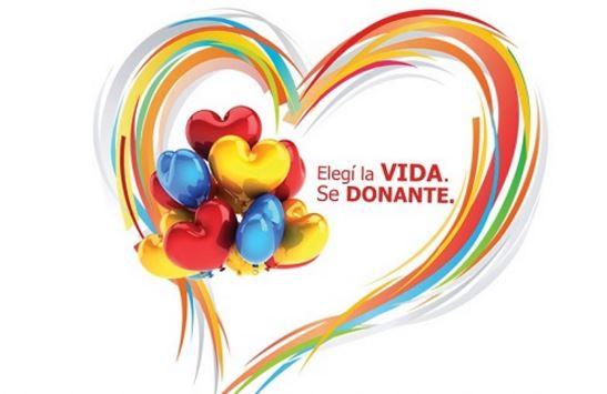 Dia mundial de la donacion de organos