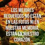 Donde se guardan los mejores recuerdos