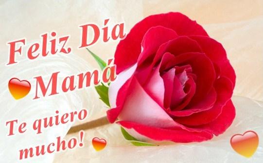 Feliz dia mamá, te quiero mucho!