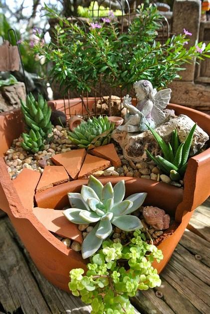 Fotos de mini jardines con suculentas