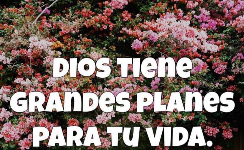 Frases sobre los planes de dios