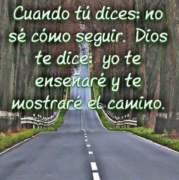 Imagenes con frase Dios te mostrará el camino