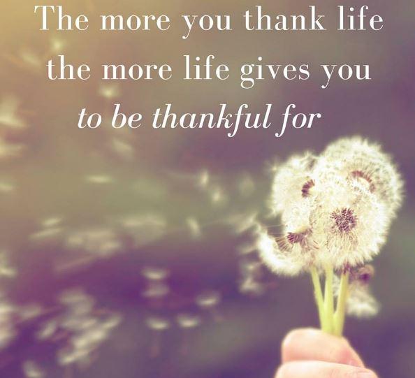 Imagenes con frases para agradecer a la vida