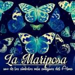Imagenes con mariposas y frases
