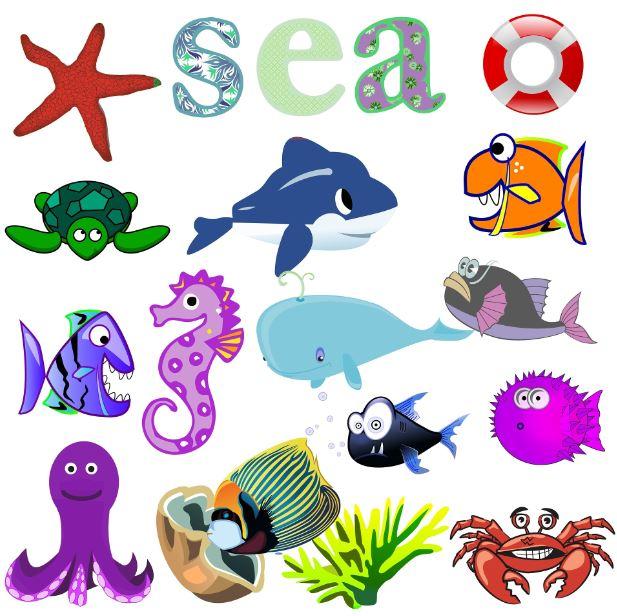 Imagenes de animales del mar para niños