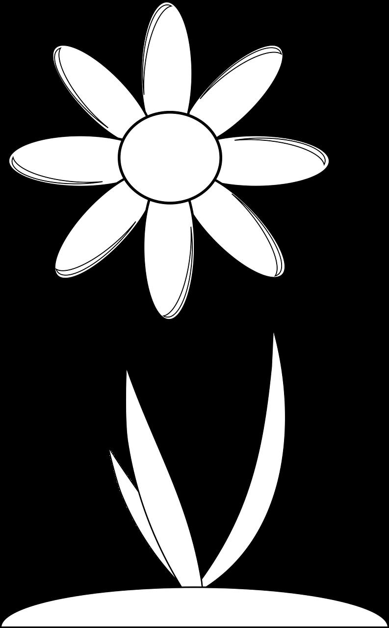 Imagenes de flores para colorear faciles
