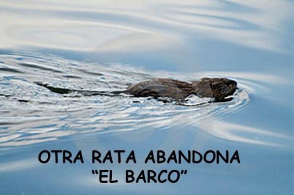 Imagenes otra rata abandona el barco