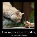 Imagenes sobre momentos difíciles