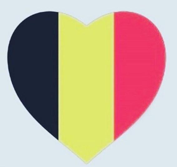 Luto belgica 2016