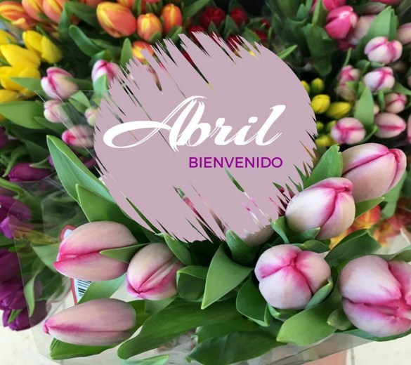 cartelitos para el facebook de abril