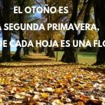 Feliz otoño frases