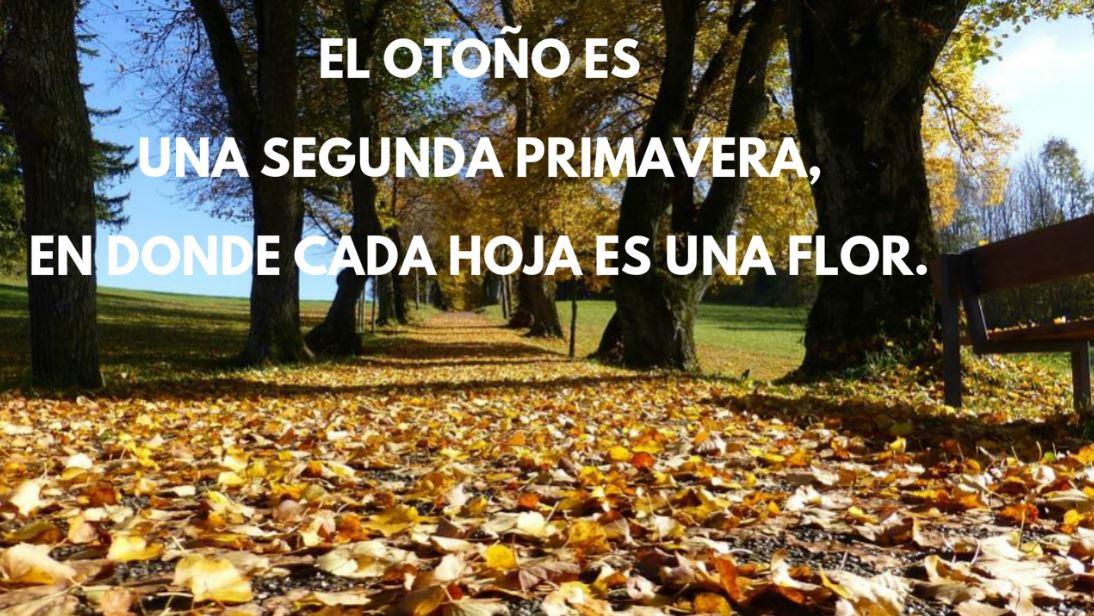 imágenes de otoño con frases bonitas