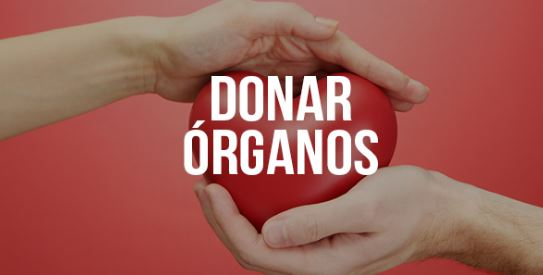 imagenes para concientizar sobre la donación de organos
